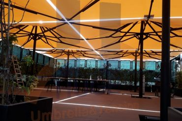 Huge Dev Şemsiye Galeri 176