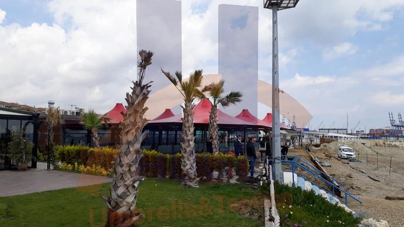 Huge Dev Şemsiye Galeri 180